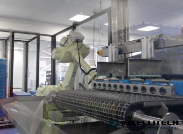 LIC Wash Automation